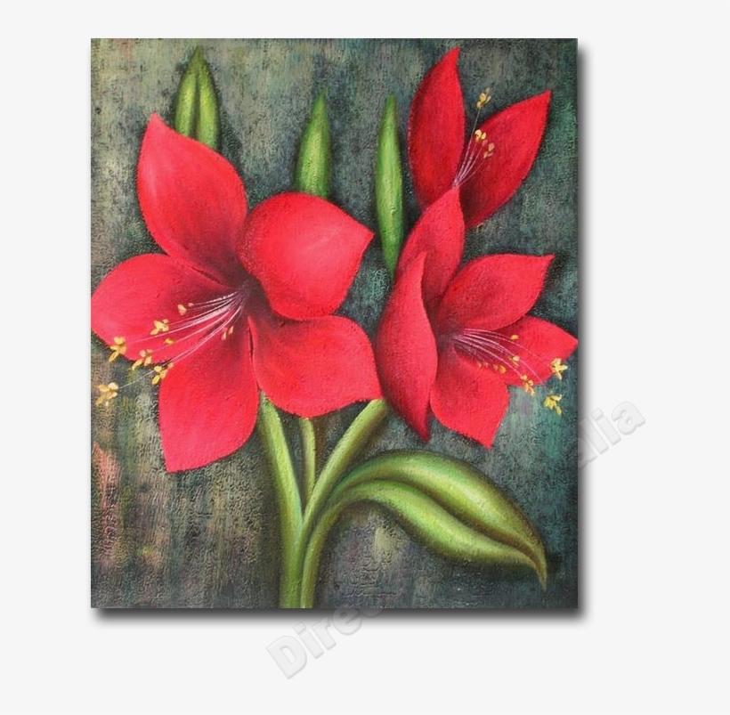 Png Freeuse Download Amaryllis Drawing Red Flower Kolay Yagli