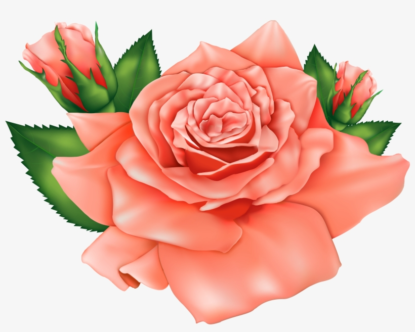 Peach Flower Clipart Orange - Orange Rose Png Clipart, transparent png #1205374