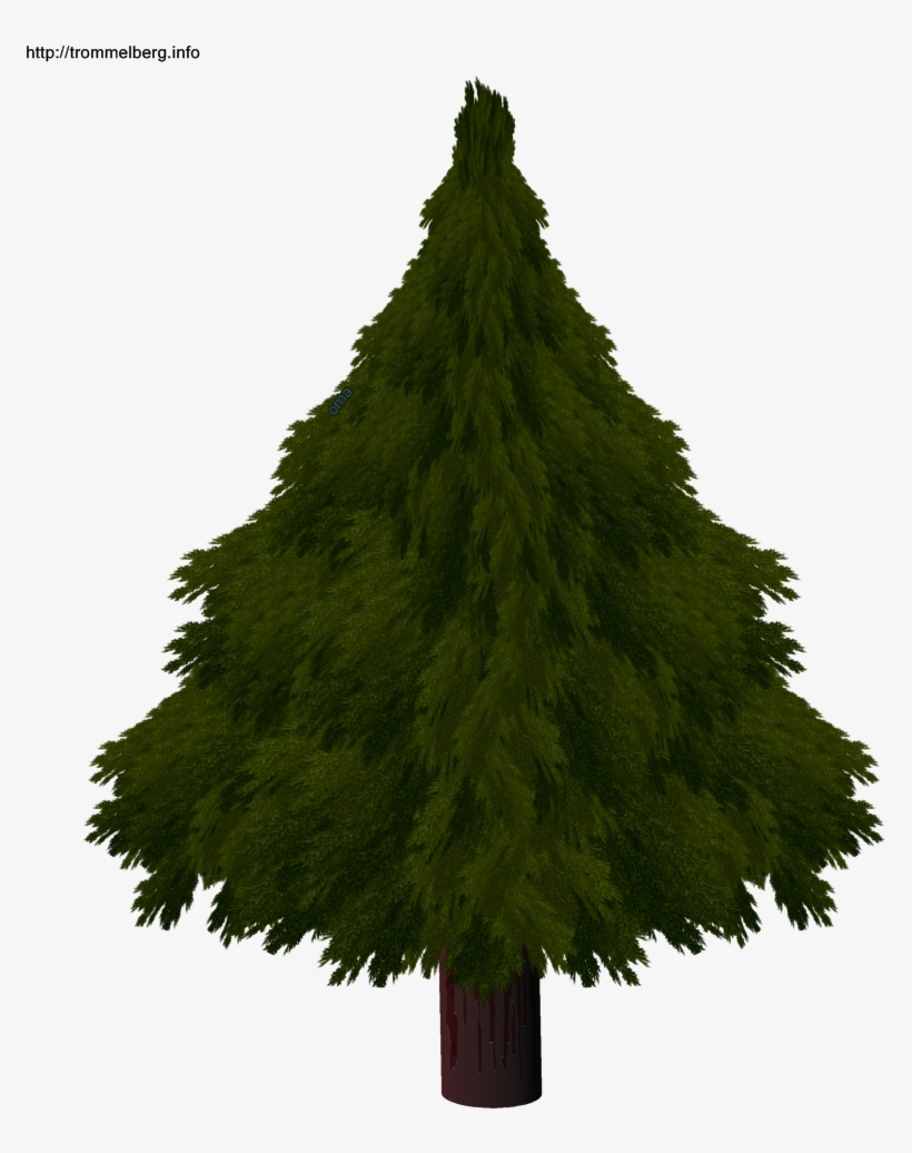 Christmas Tree Drawing Realistic Com Free For Realistic - Christmas Tree, transparent png #1273074
