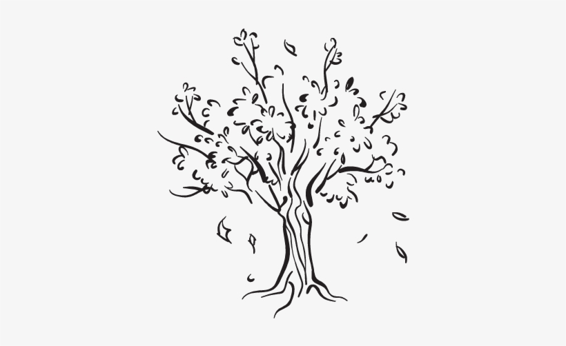 Willow Drawing Whimsical Tree - Tree Leaves Falling Drawing, transparent png #1288314