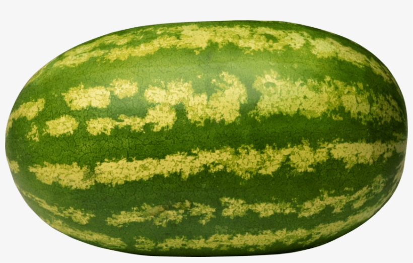 Free Png Watermelon Png Images Transparent - Giant Watermelon Fruit Seeds, transparent png #131184