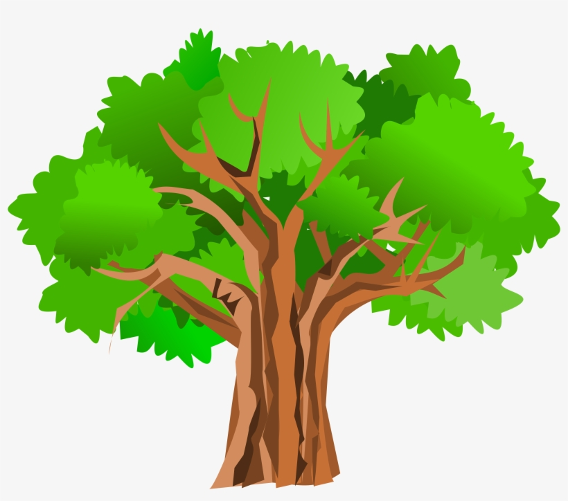 Big Tree Clipart - Tree Clipart Transparent, transparent png #131211