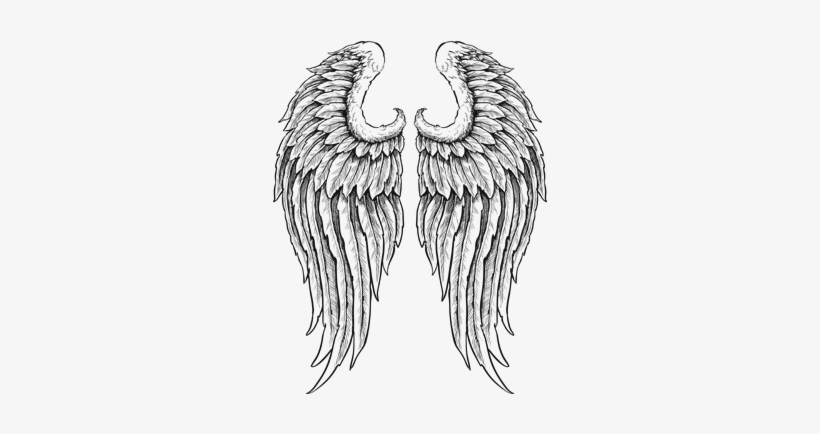Banner Royalty Free Library Outline Of Wings Clip Art Detailed Angel Wings With Feathers Black White Vinyl Free Transparent Png Download Pngkey