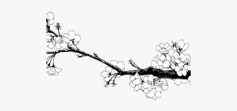 Cherry Blossom Clipart Transparent - Lan Wang Ji X Wei Wuxian, transparent png #132347
