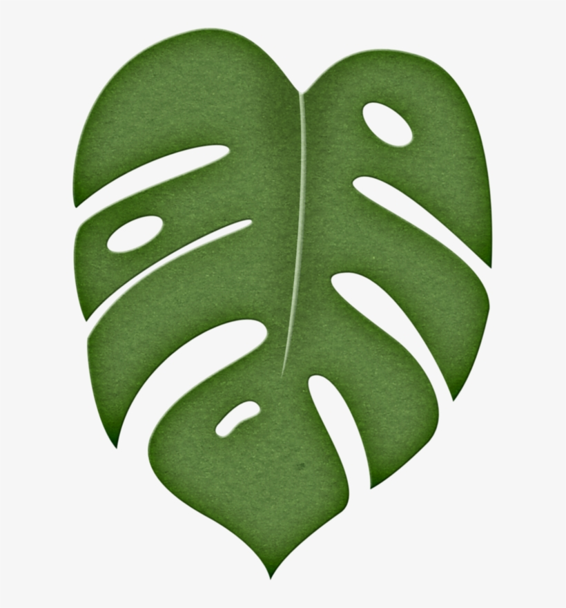 Leaf Png Pinterest Moana Stenciling And Template Jungle Leaf Clipart Free Transparent Png Download Pngkey Looking for other tropical themed wedding invitations? leaf png pinterest moana stenciling and