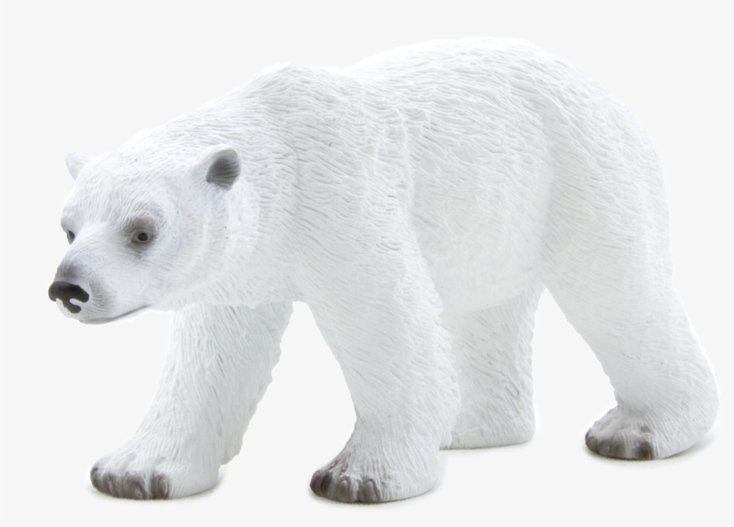 Animal Planet: Polar Bear, transparent png #134731