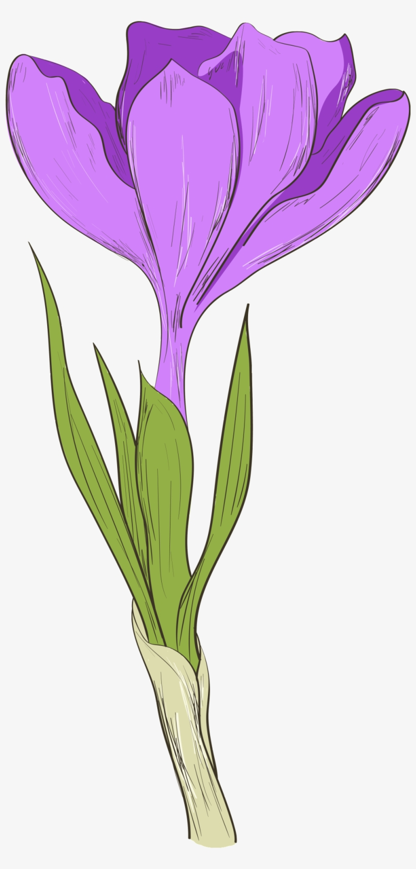 This Graphics Is Hand Painted A Purple Flower Transparent - Flower, transparent png #135709
