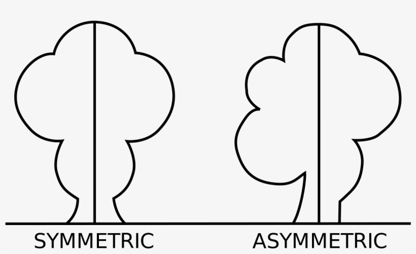 Asymmetric Drawing Geometry Line - Symmetrical And Asymmetrical Shapes, transparent png #1315990