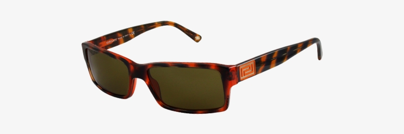 4ab9260f1b6 Versace Sunglasses Ve4198 Brown Orange - Ray Ban Wayfarer 2140 Special  Series 10