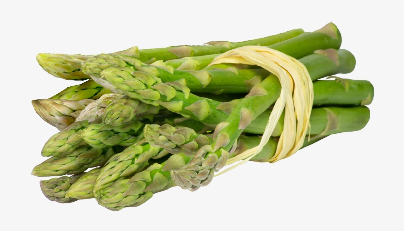 Asparagus Puree - Paleo Secrets: Ultimate Beginner's Guide With Recipes, transparent png #1327177