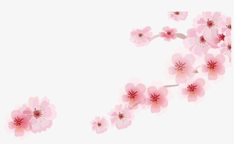 Cherry Blossom Cartoon Romantic Sakura Japanese Cartoon - Cherry Blossom, transparent png #1329827