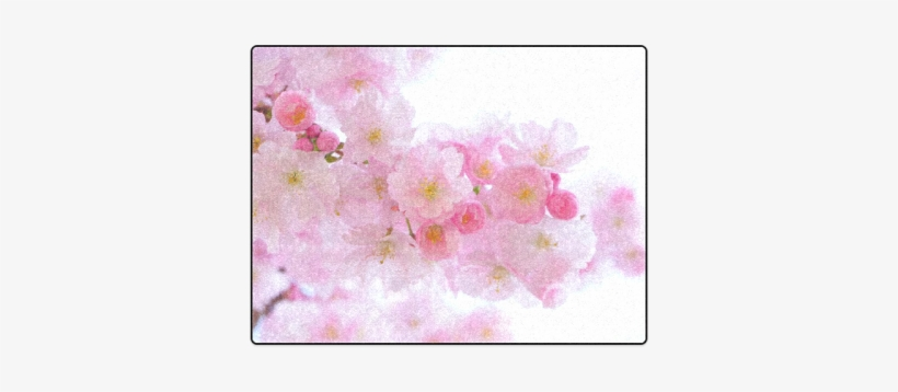 Beautiful Pink Japanese Cherry Tree Blossom Blanket - Cherry Blossom, transparent png #1329990