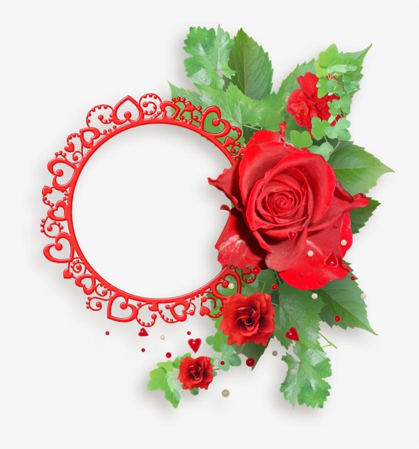 Red Roses Frames Transparent Red Rose Png Frame Free