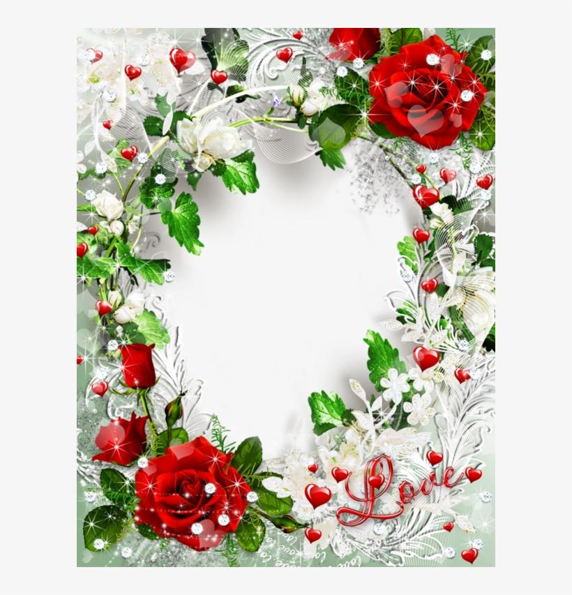 Beautiful Transparent Rose Photo Frame Love Gallery ...