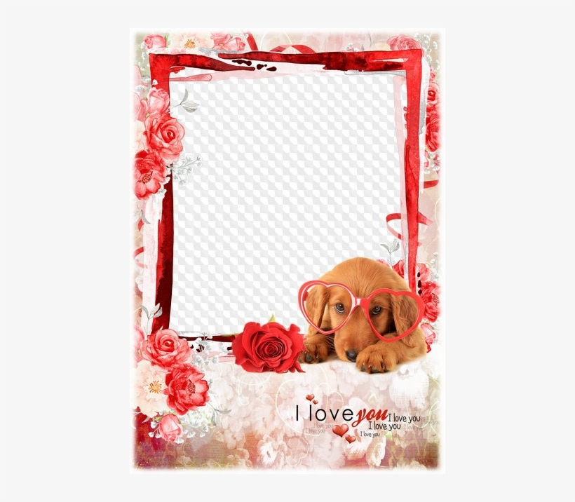 I Love You Moldura Para Fotos Gratis Online Free Transparent Png Download Pngkey