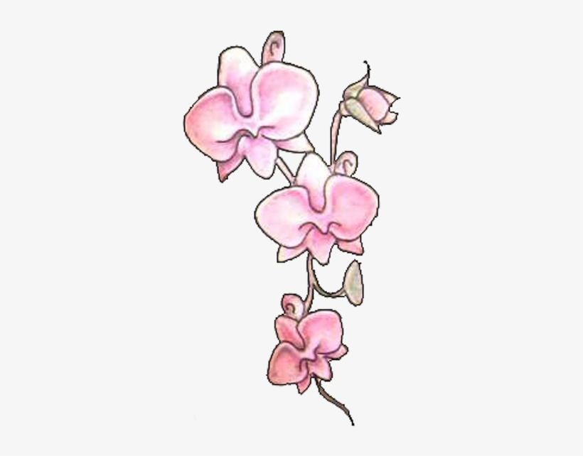 Pink Orchid Flowers Tattoos Design - Tattoo, transparent png #1366771