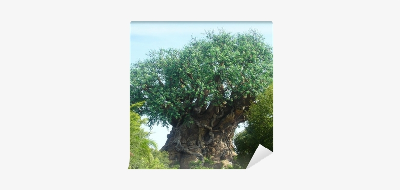 Disney World, The Tree Of Life, transparent png #1373317