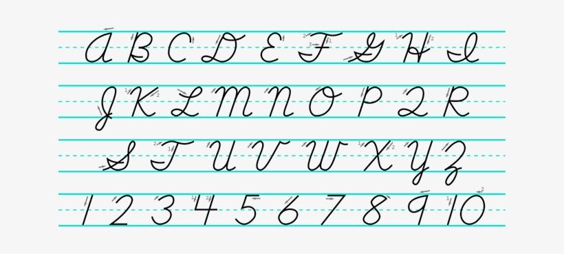 Cursive Letters Capital - Letter