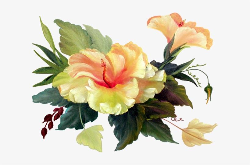 Publicat De Eu Ciresica La - Chinese Hibiscus, transparent png #1384652