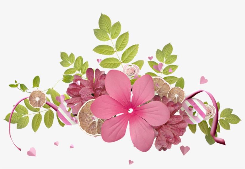 Flores Png Flores Fondo Transparente Png Free Transparent Png