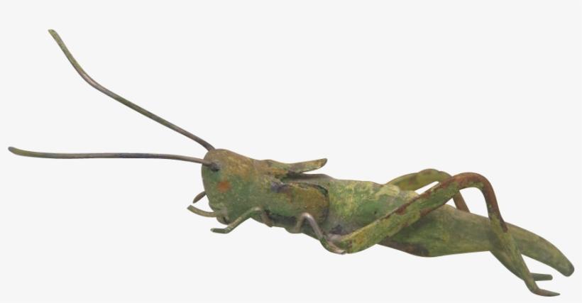 Antique Vienna Bronze Figure Of A Green Grasshopper, - 20th Century, transparent png #1385936