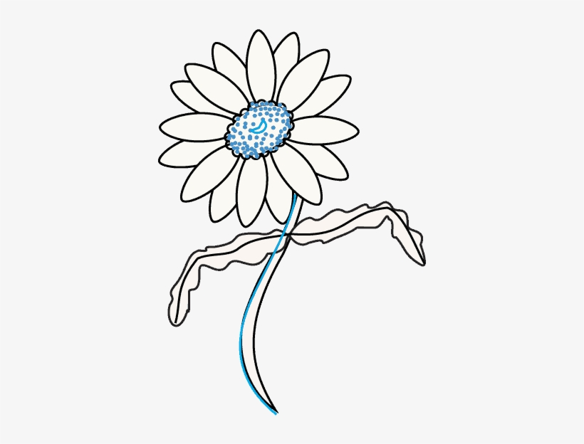 How To Draw Daisy Flower - Daisy Draw Out Flower, transparent png #1388963
