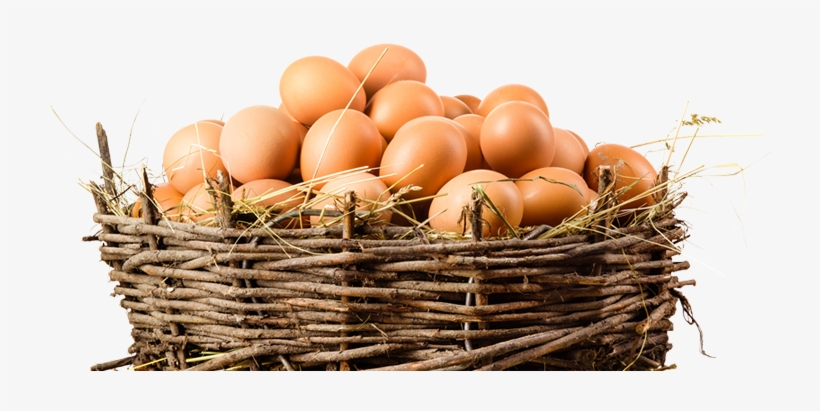 Organic Eggs Png Image Stock - Eggs In A Basket Png, transparent png #140516