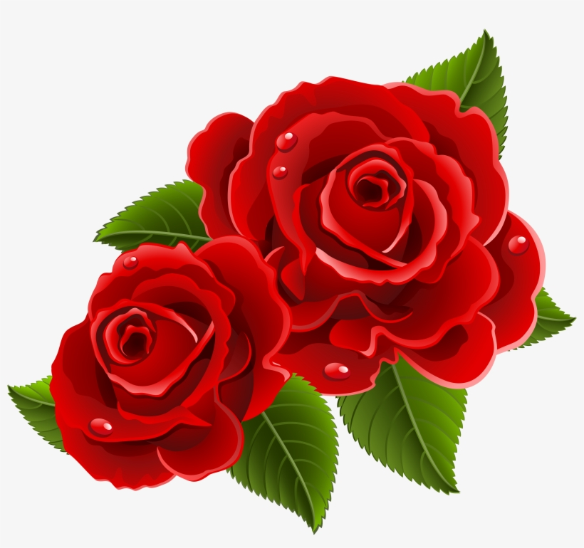 Beautiful Clipart Red Rose - Beautiful Red Rose Flowers, transparent png #144635
