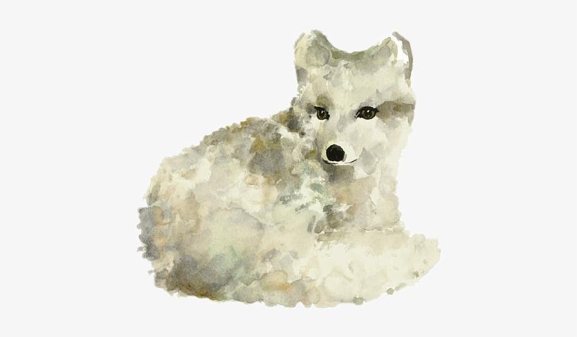Fox Freetoedit Articfox White Watercolor - Arctic Fox Watercolor Art Print Painting, transparent png #147215