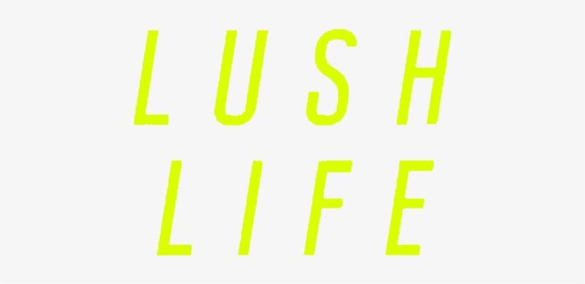 zara larsson - lush life download