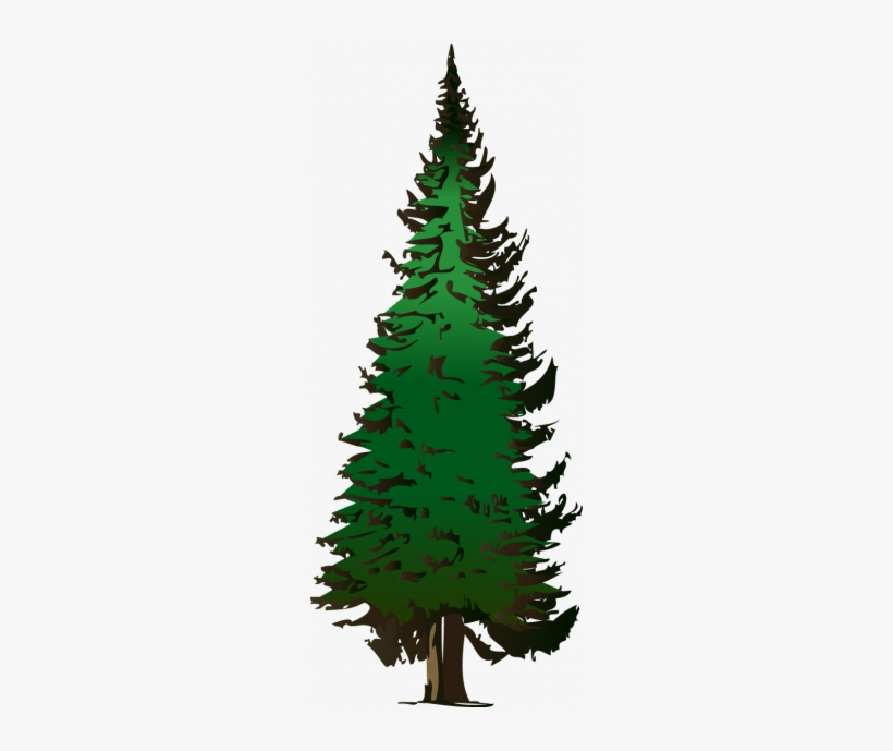Pine Tree Png Clip Art - Fir Tree Clip Art, transparent png #1450357