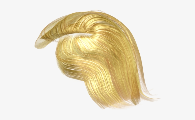 See More Details About The Full 3d Character File Format - Donald Trump 3d Hair Model, transparent png #1457604