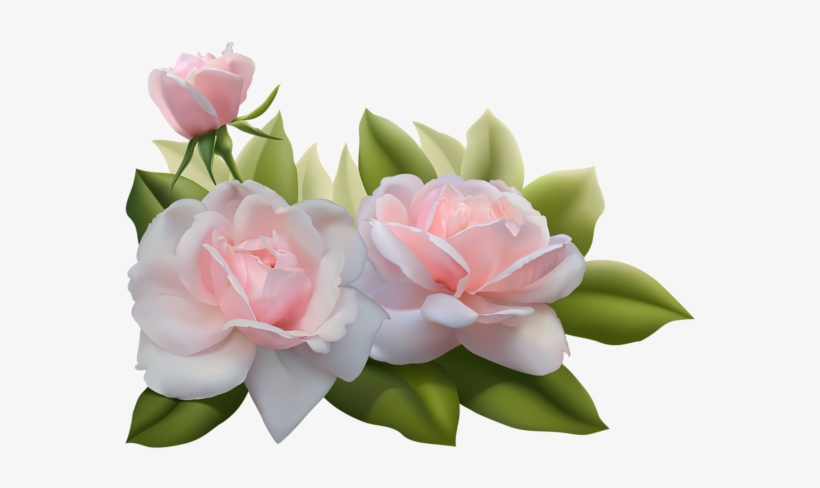 Pink Rose Clipart Three - Beautiful 3d Flower Png, transparent png #1458410