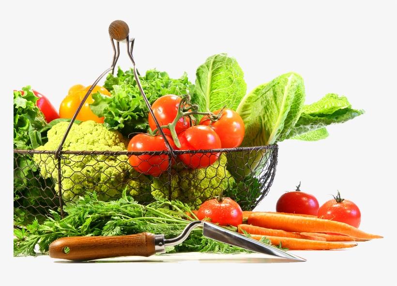 Vegetable Png Image - Vegetable, transparent png #1458556