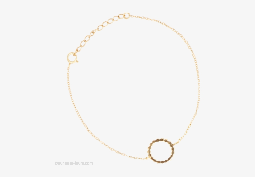 Women Gold All The Luck In The World Bracelet Fortune - Necklace, transparent png #1458622