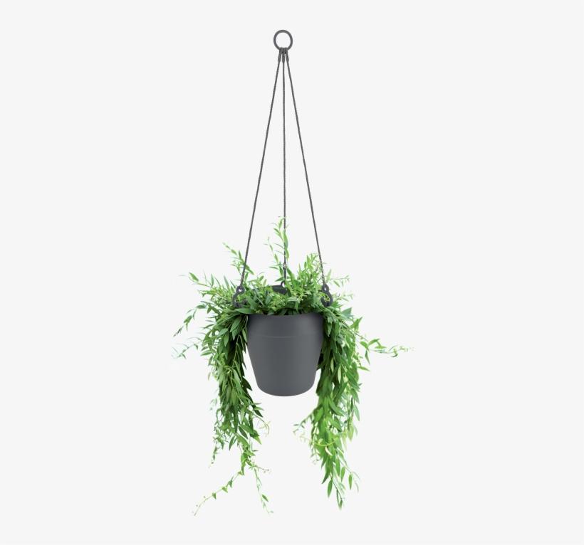Home > Collection > Loft Urban Hanging Basket - Christmas Tree, transparent png #1467281