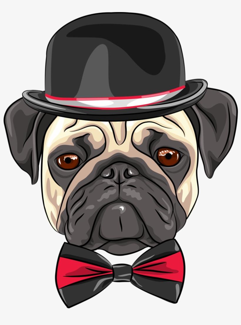 Cães & Gatos - Youtube Profile Picture Pug, transparent png #1472594