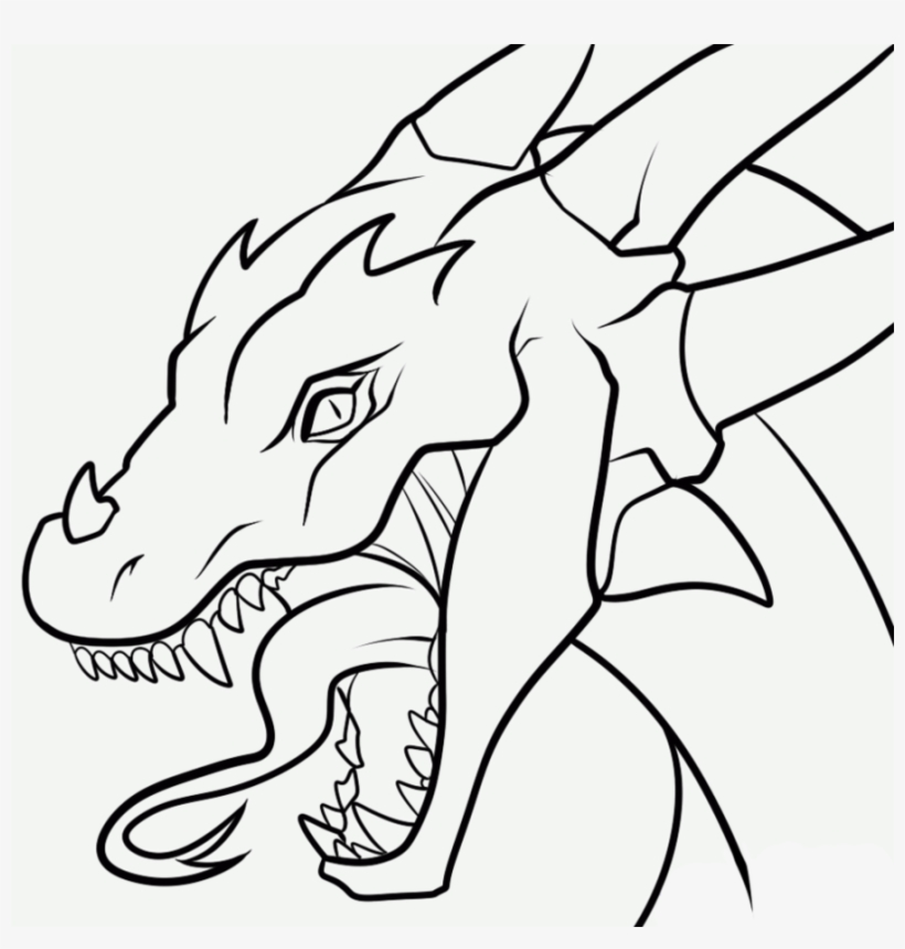 2e9548fdb33 More Like I m Just Too Cute To Have Legs By Nothofagus - Simple Dragon Head  Drawing