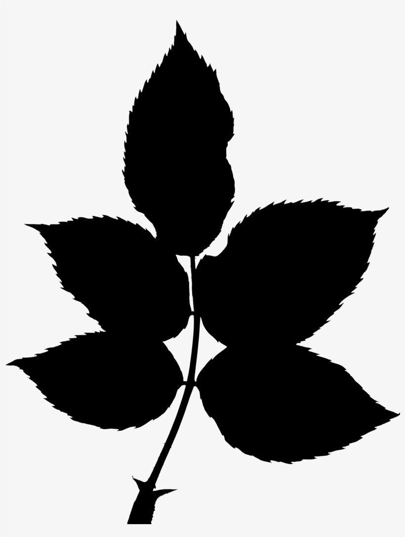 Transparent Leaves Silhouette - Tree Big Leaves Silhouette, transparent png #1482605