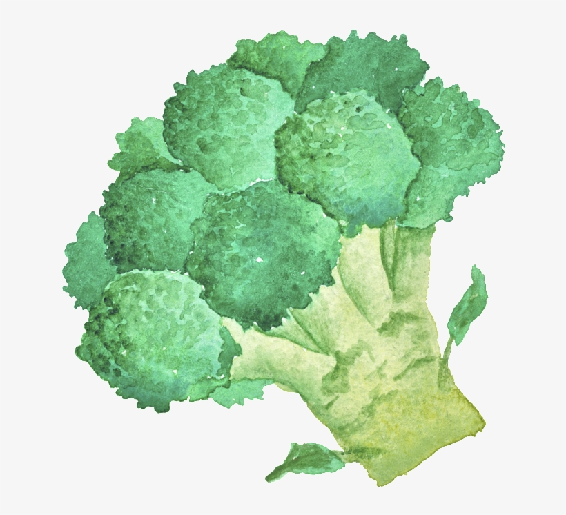 Green Hand Painted Broccoli Cartoon Vegetable Kitchen - Broccoli, transparent png #1490088