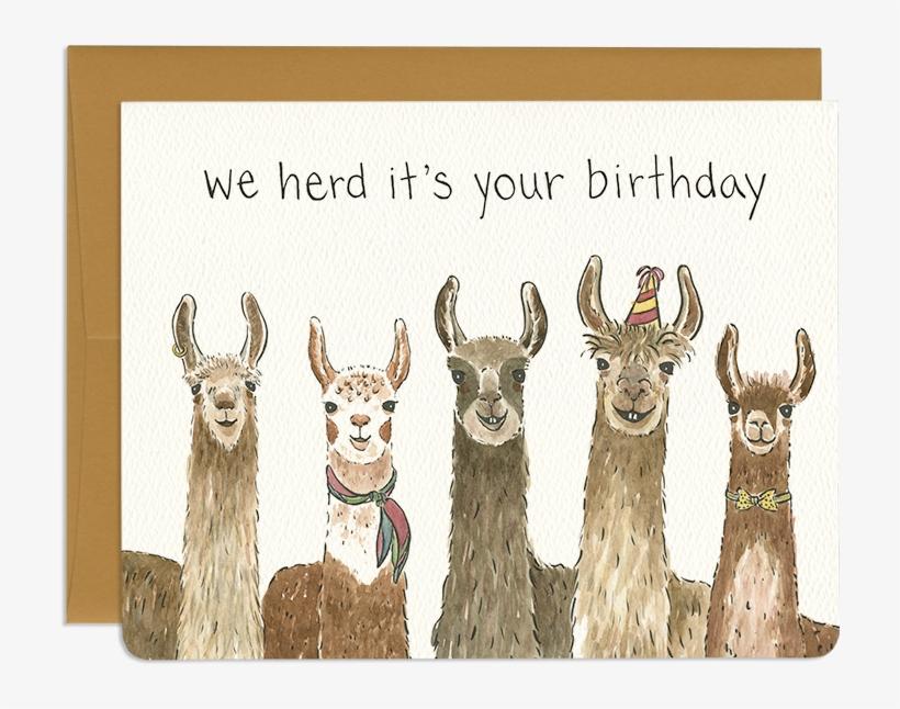Clipart Freeuse Stock Birthday Card Greeting Cards Llama Birthday