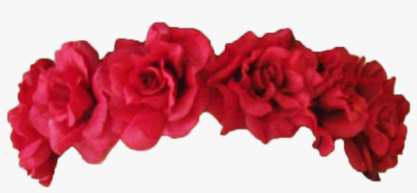 Flower Crown Transparent Overlay - Red Flower Crown Png, transparent png #150642