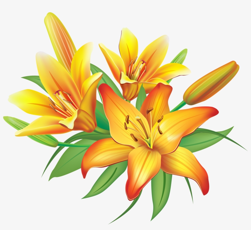 Yellow Flower Clipart Png Format Clipart Of Lily Flower Free