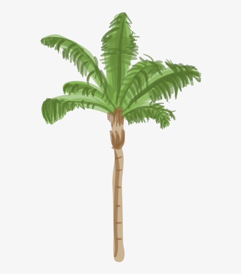 Canary Island Date Palm - Palm Tree Base Png, transparent png #154360
