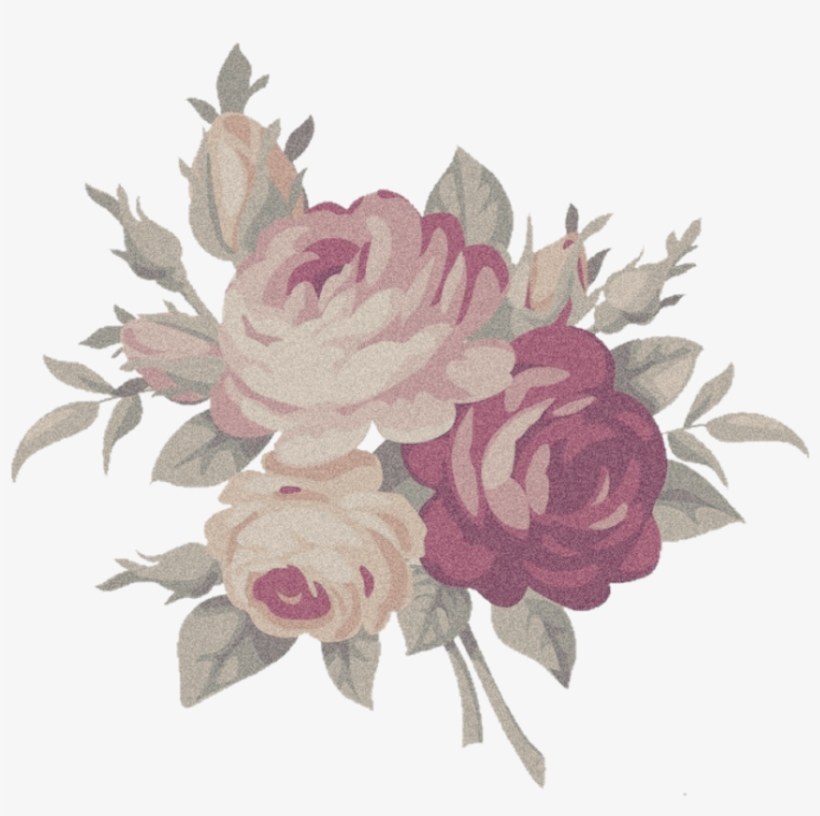 Rose aesthetic. Flower png free transparent