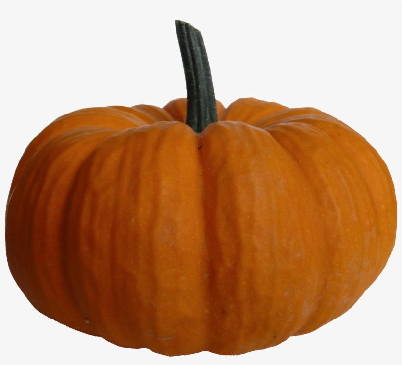 Autumn Pumpkin Transparent Png - Pumpkin Png File, transparent png #159074