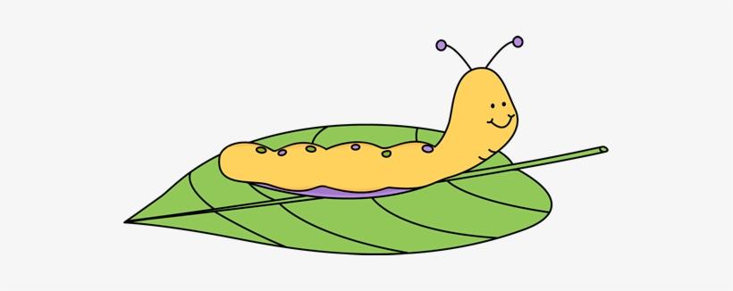 Caterpillar Clip Art Caterpillar On A Leaf Clipart Free Transparent Png Download Pngkey