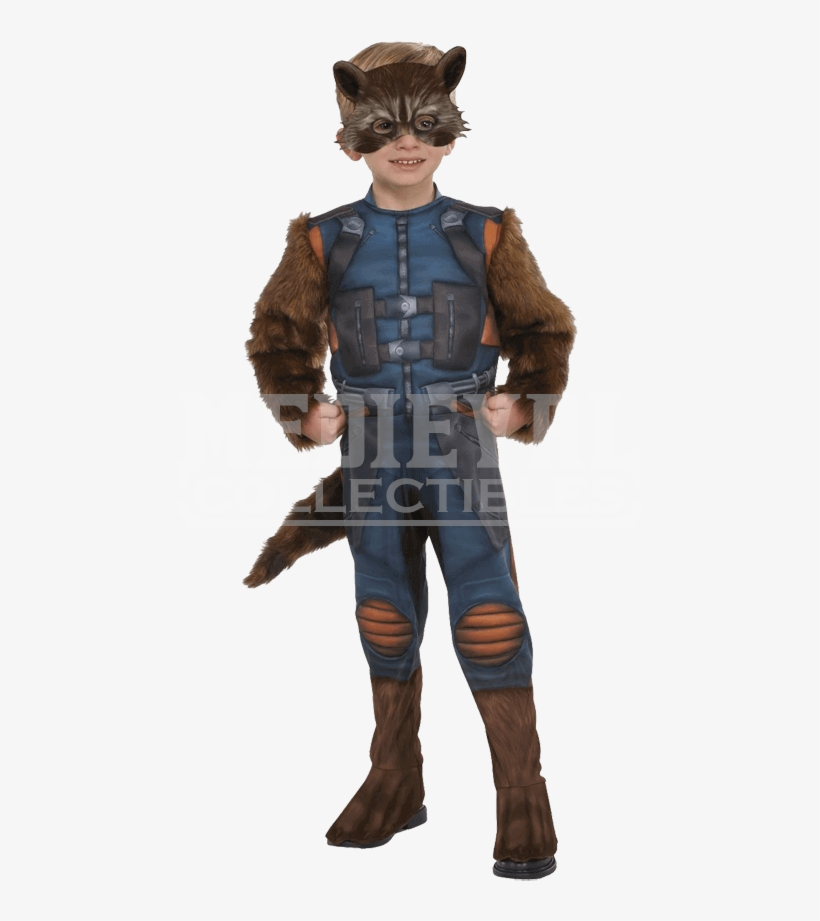 Toddler Rocket Raccoon Costume - Rocket Raccoon Costume, transparent png #1508110