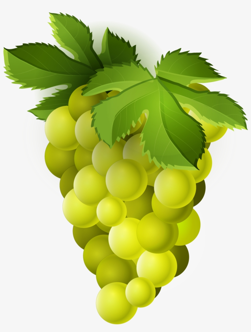 Grape Png Trans Green Grapes Fruit Clipart Png Free