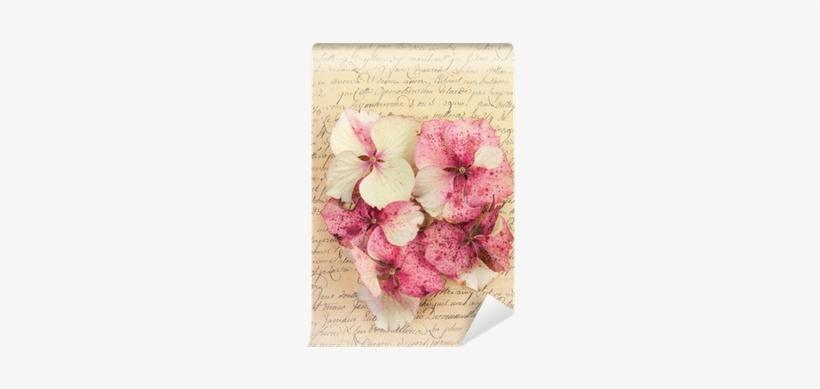 Vintage Pink Antiques, transparent png #1519863